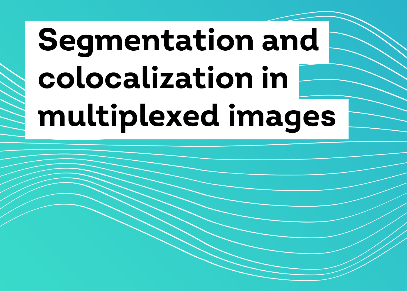 Segmentation and colocalization in multiplexed images