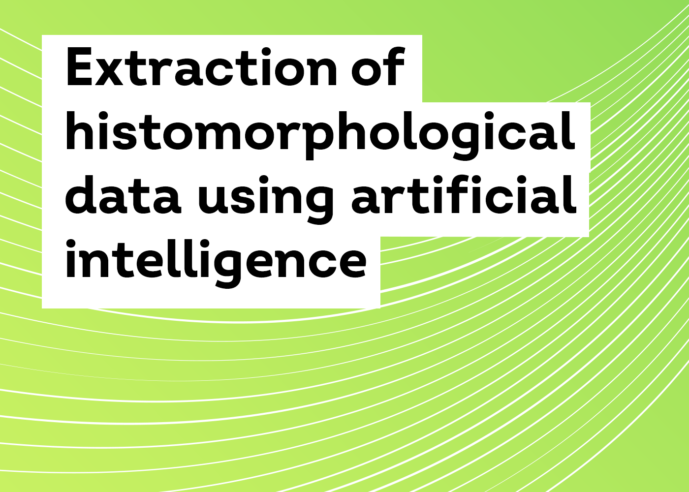 Extraction of histomorphological data using artificial intelligence